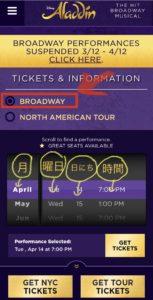 img 0659 medium - ニューヨーク ブロードウェイでアラジンのチケット購入方法!