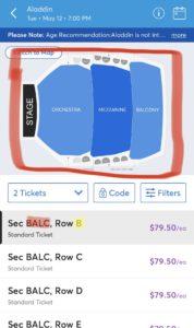 img 0665 medium - ニューヨーク ブロードウェイでアラジンのチケット購入方法!