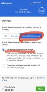 img 0670 medium - ニューヨーク ブロードウェイでアラジンのチケット購入方法!