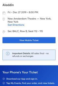 img 0683 2 medium - ニューヨーク ブロードウェイでアラジンのチケット購入方法!